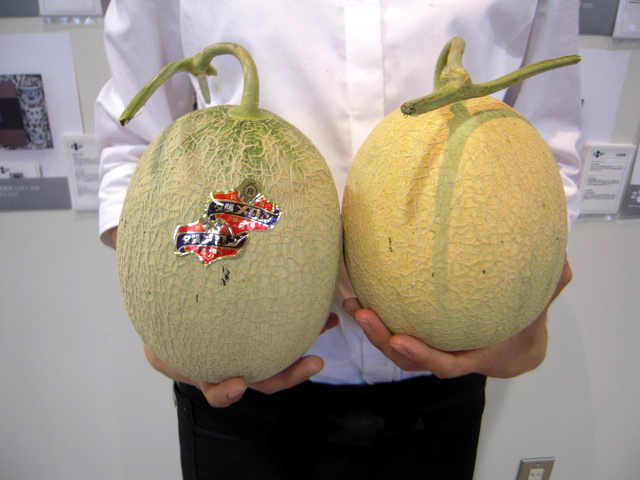 17_melon.jpg